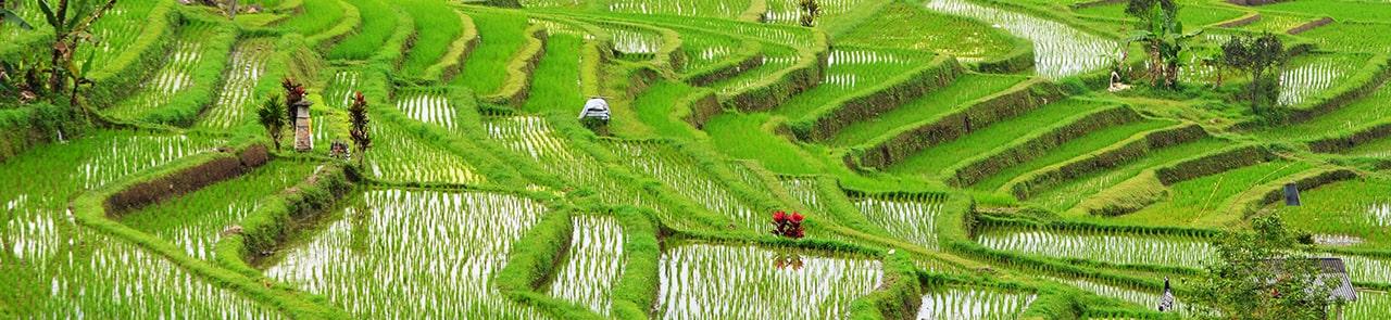 Top 5 des destinations en Indonésie